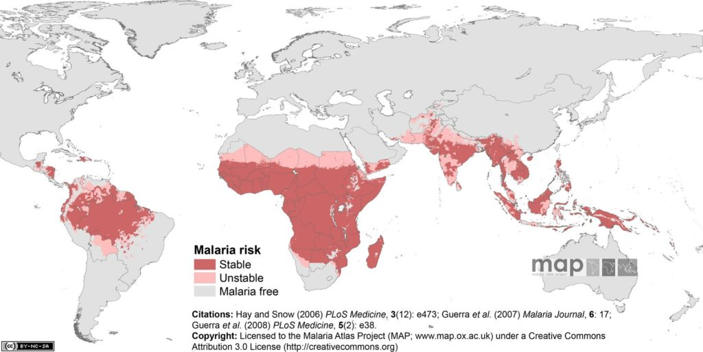 Global malaria map
