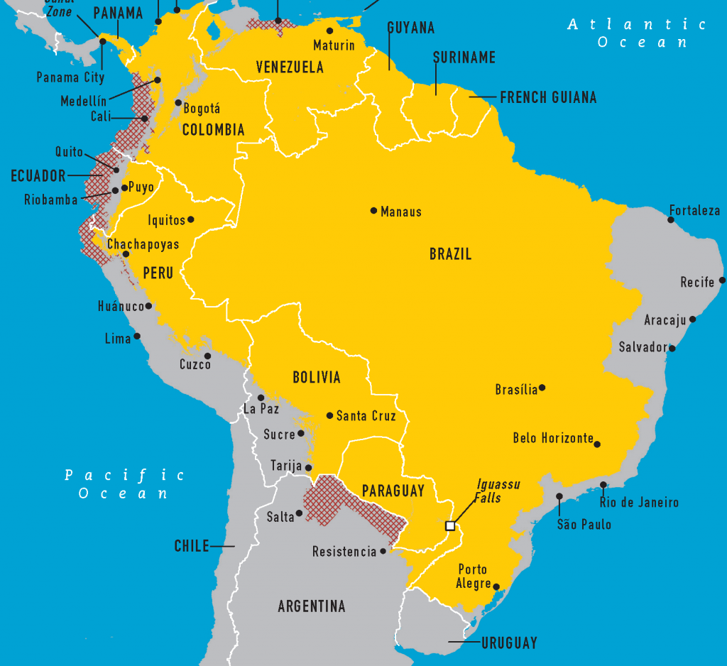 yellow-fever-brazil